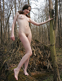 Naked cutie in the forest
